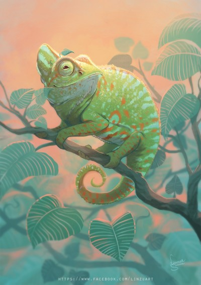 Cameleon pet portrait