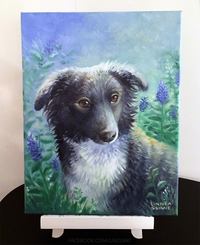 Oil on canvas – Pet Portrait